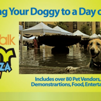 8th Annual Doggy Party on the Plaza