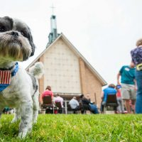 Blessing of the Animals at Bellaire United Methodist Church