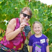 Messina Hof Harvest Festival 2017: Daytime Harvest (Saturdays)