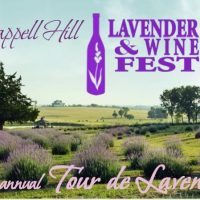 2017 Lavender and Wine Fest