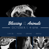 Blessing of the Animals 2017 (at Trinity Episcopal Church)