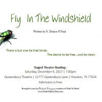 Fly In The Windshield - Staged Reading