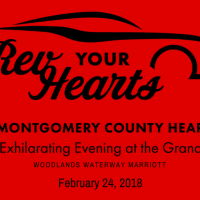 2018 Montgomery County Heart Ball - A Night at the Grand Prix: Rev Your Hearts