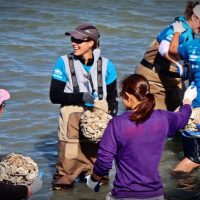 Lecture: Oyster Reef Restoration in Texas