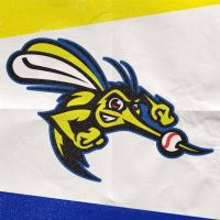 Sugar Land Skeeters vs New Britain Bees