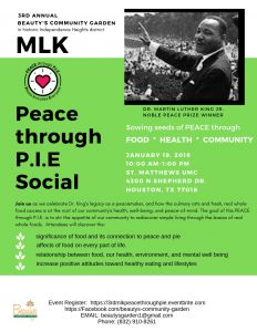 Martin Luther King, Jr. Peace through PIE