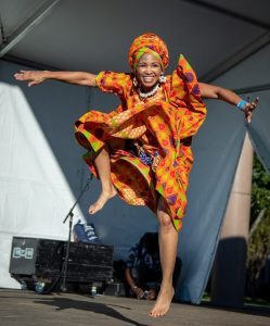 The 7th Annual Houston African Festival - 2019 Hou...