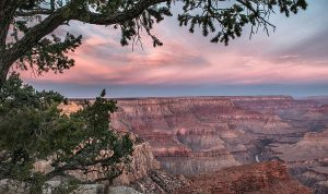 Grand Canyon Photographs: Celebrating the Centenni...