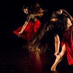 Houston Choreographers X6