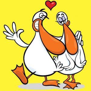 Duck à l'Orange (Le Canard à l'orange)