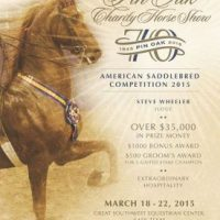 Pin Oak Charity Horse Show 2015