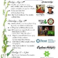 2015 Rice Village Food and Wine Festival