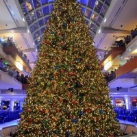 The Galleria: 27th Annual Tree Lighting and Ice Spectacular
