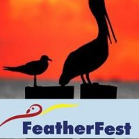 14th Annual FeatherFest Birding and Nature Photography Festival