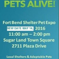 Second Annual Fort Bend Shelter Pet Expo NEW DATE