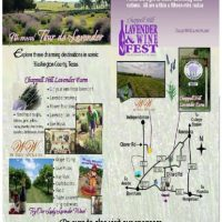 2016 Lavender and Wine Fest
