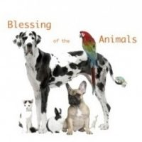 Blessing of the Animals at St. Andrew's