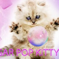 Sugar Pop Kitty Rush