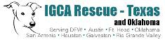 Wines of the World 2nd Annual Italian Greyhound Rescue Wine Walk