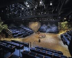 Alley Theatre - Neuhaus Stage